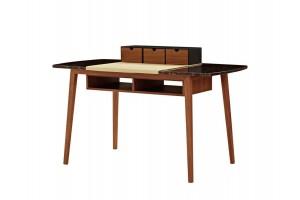 DANA Desk
